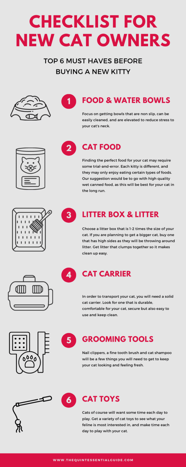 Checklist for First Time Cat Owner